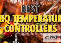 5 Best BBQ Temperature Controllers (Reviews Updated 2021)