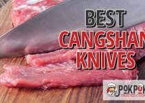 5 Best Cangshan Knives (Reviews Updated 2021)