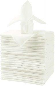 Ascoza Cloth Napkins