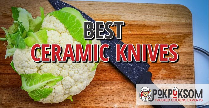 Best Ceramic Knives