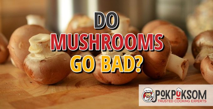 Do Mushrooms Go Bad