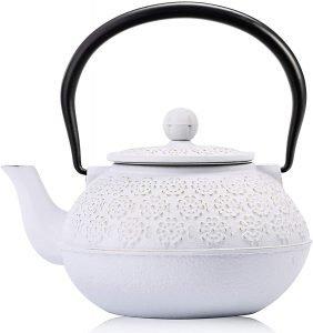 Sotya Tetsubin Cast Iron Teapot