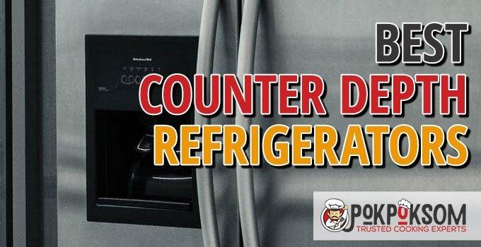 Best Counter Depth Refrigerators