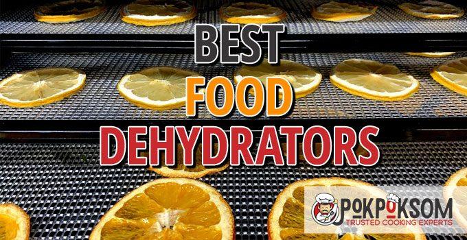 Best Food Dehydrators