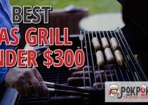 Best Gas Grill Under $300