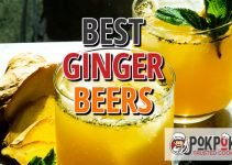 Best Ginger Beers