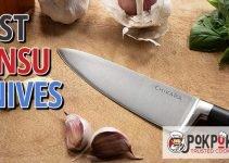 5 Best Ginsu Knives (Reviews Updated 2021)