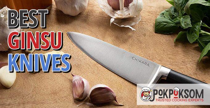 Best Ginsu Knives