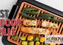 5 Best Indoor Grills (Reviews Updated 2021)