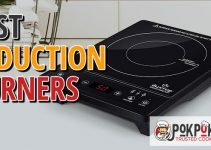 5 Best Induction Burners (Reviews Updated 2021)