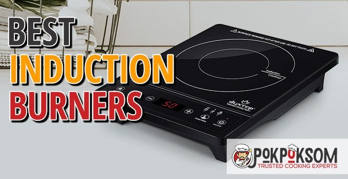 Best Induction Burners