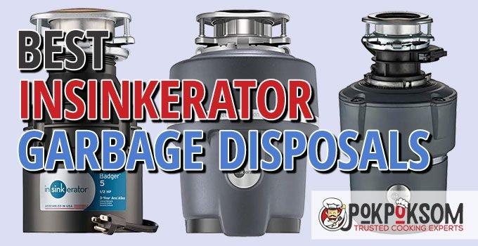 Best Insinkerator Garbage Disposals