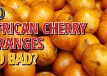 Do African Cherry Oranges Go Bad