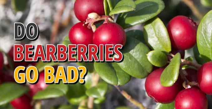 Do Bearberry Go Bad
