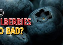 Does Bilberry Go Bad?