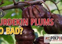 Do Burdekin Plums Go Bad