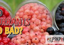 Does Currant Go Bad?