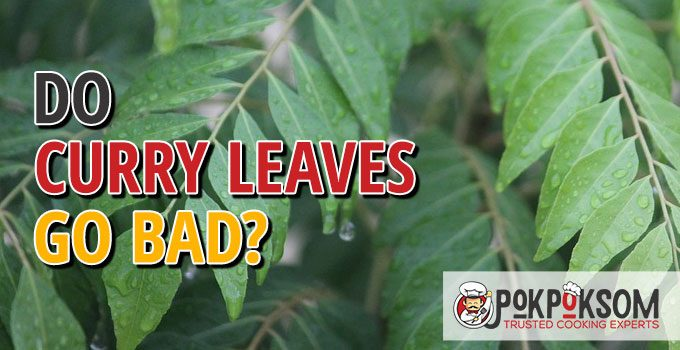 Do Curry Leaves Go Bad