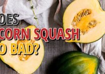 Does Acorn Squash Go Bad