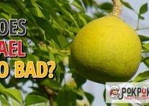 Does Bael Go Bad?