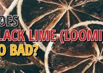 Does Black Lime (loomi) Go Bad Go Bad
