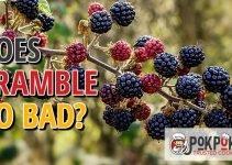 Does Bramble Go Bad?