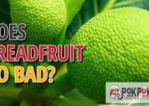 Does Breadfruit Go Bad