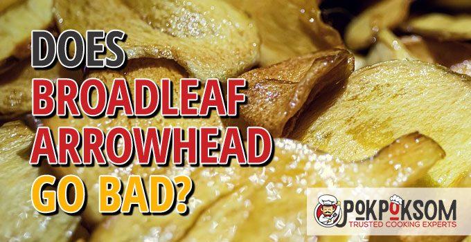 Does Broadleaf Arrowhead Go Bad
