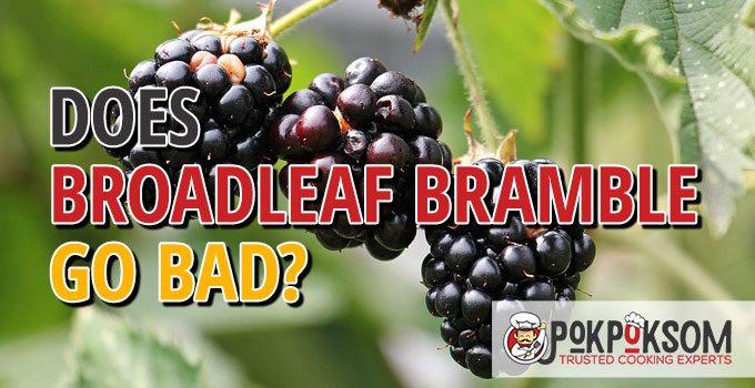 Does Broadleaf Bramble Go Bad