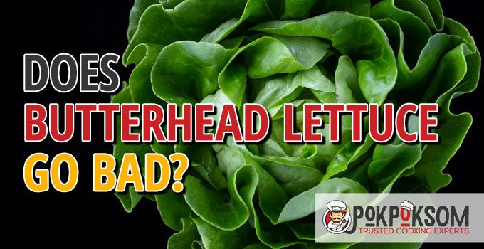 Does Butterhead Lettuce Go Bad