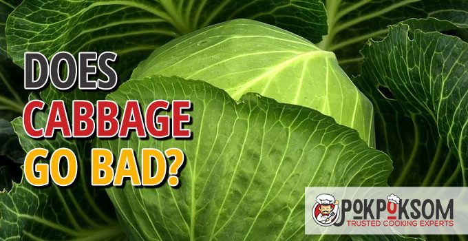 Does Cabbage Go Bad