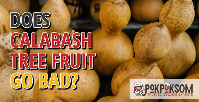 Does Calabash Tree Fruit Go Bad