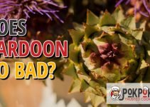 Does Cardoon Go Bad