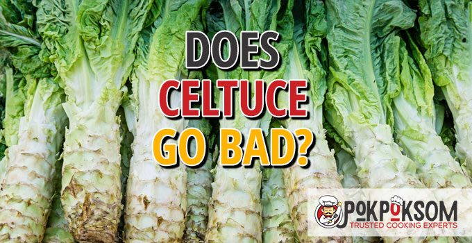 Does Celtuce Go Bad