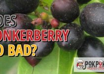 Does Conkerberry Go Bad