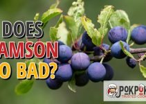 Does Damson Go Bad