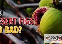 Does Desert Fig Go Bad