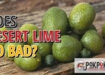 Does Desert Lime Go Bad