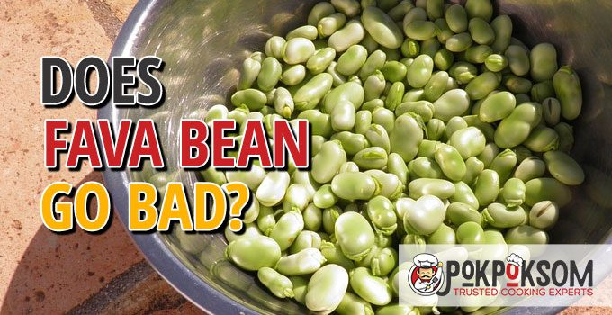 Does Fava Bean Go Bad