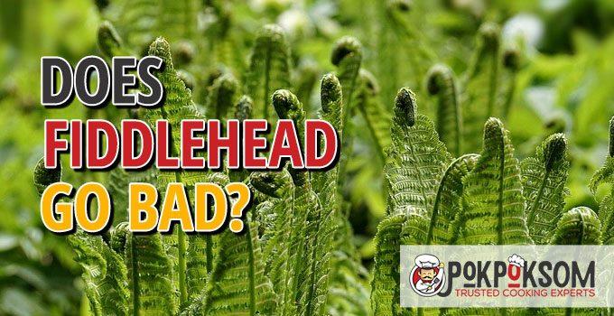 Does Fiddlehead Go Bad