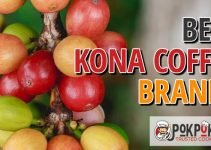 Best Kona Coffee Brands