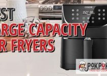 5 Best Large Capacity Air Fryers (Reviews Updated 2021)