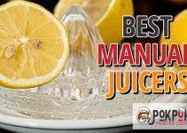 Best Manual Juicers