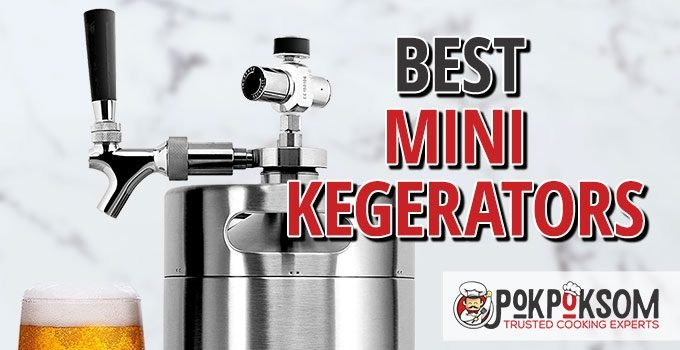 Best Mini Kegerators