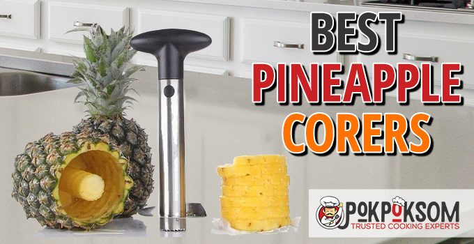 Best Pieneapple Corers