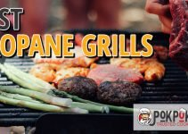 Best Propane Grills