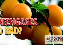 Does Greengage Go Bad?