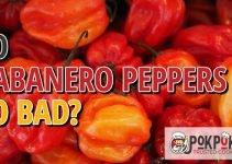 Do Habanero Peppers Go Bad