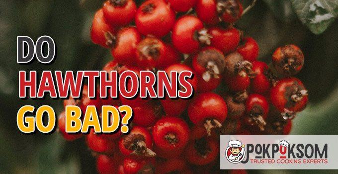Do Hawthorns Go Bad