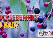 Do Huckleberries Go Bad